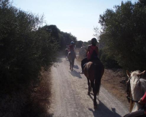 Menorca Horseriding